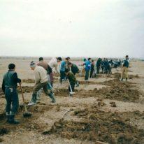 1. Digging process