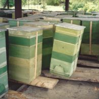 6. 3000 BeeHives were Build in Artsakh and distributed to families