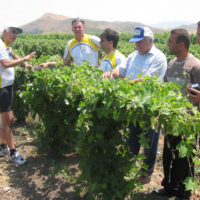 ATG Agro Tour at grape nursery in Artsakh