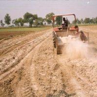 Soil Reclamation